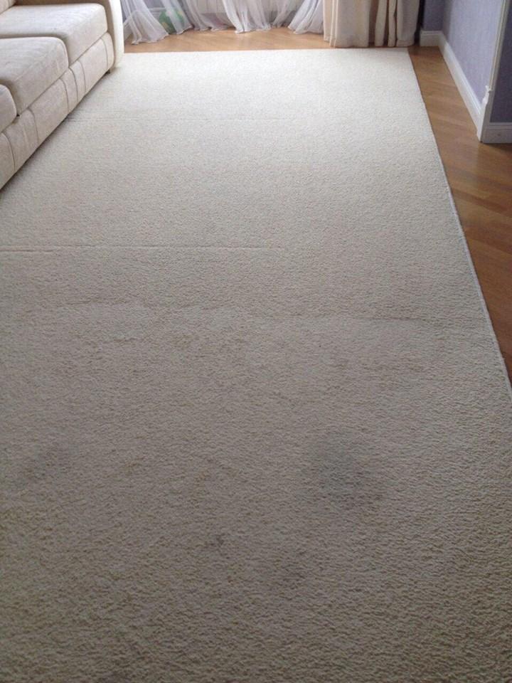 чистка пятен на ковре
