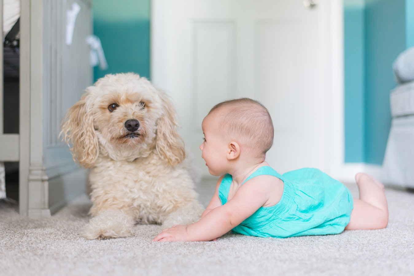 Маленький ребенок на полу играет с собачкой